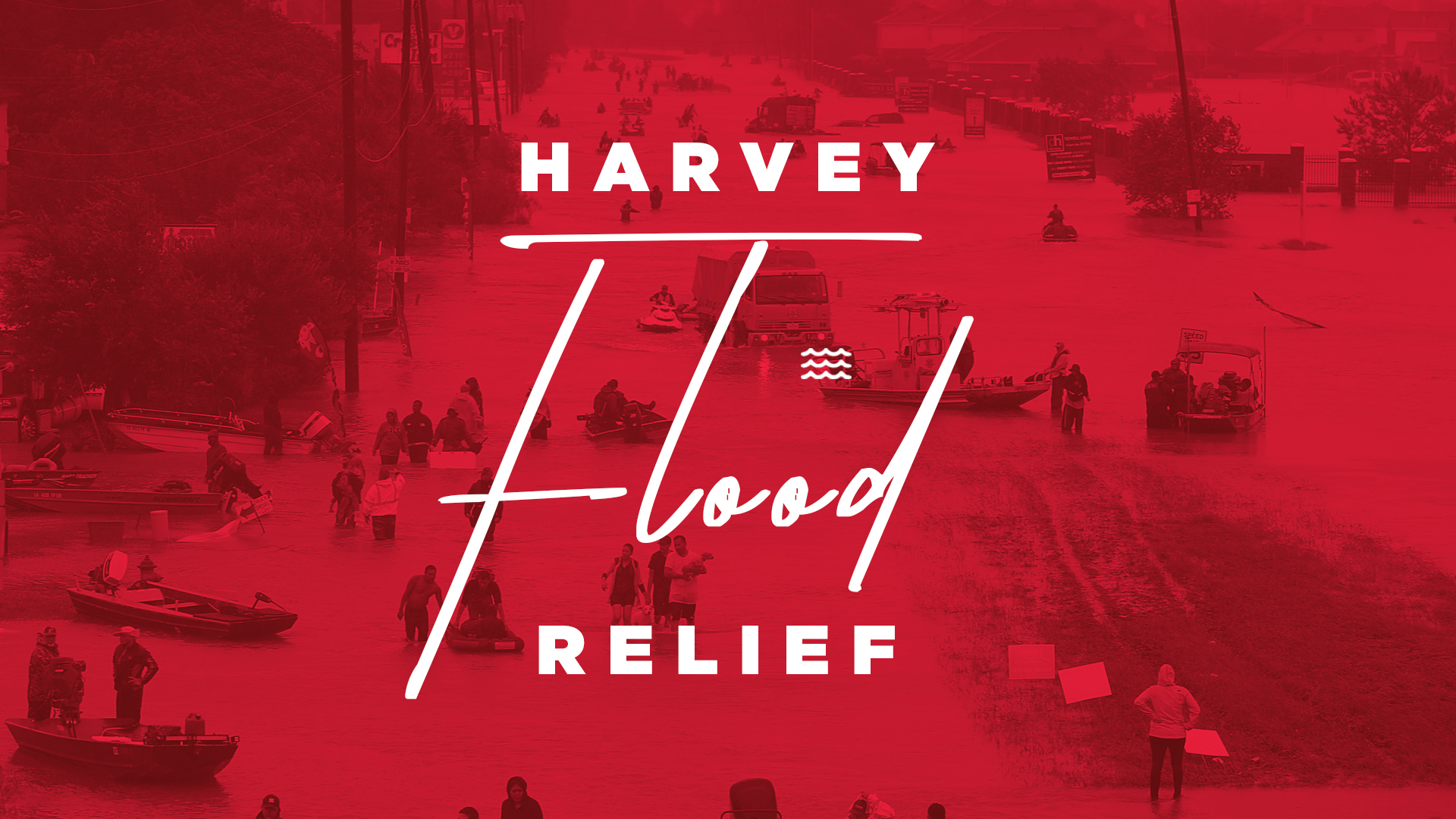 final-harvey